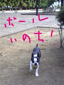 Image578