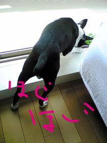 Image580