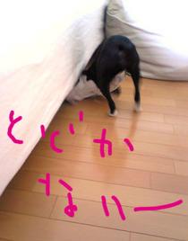 Image582