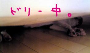 Image657_4